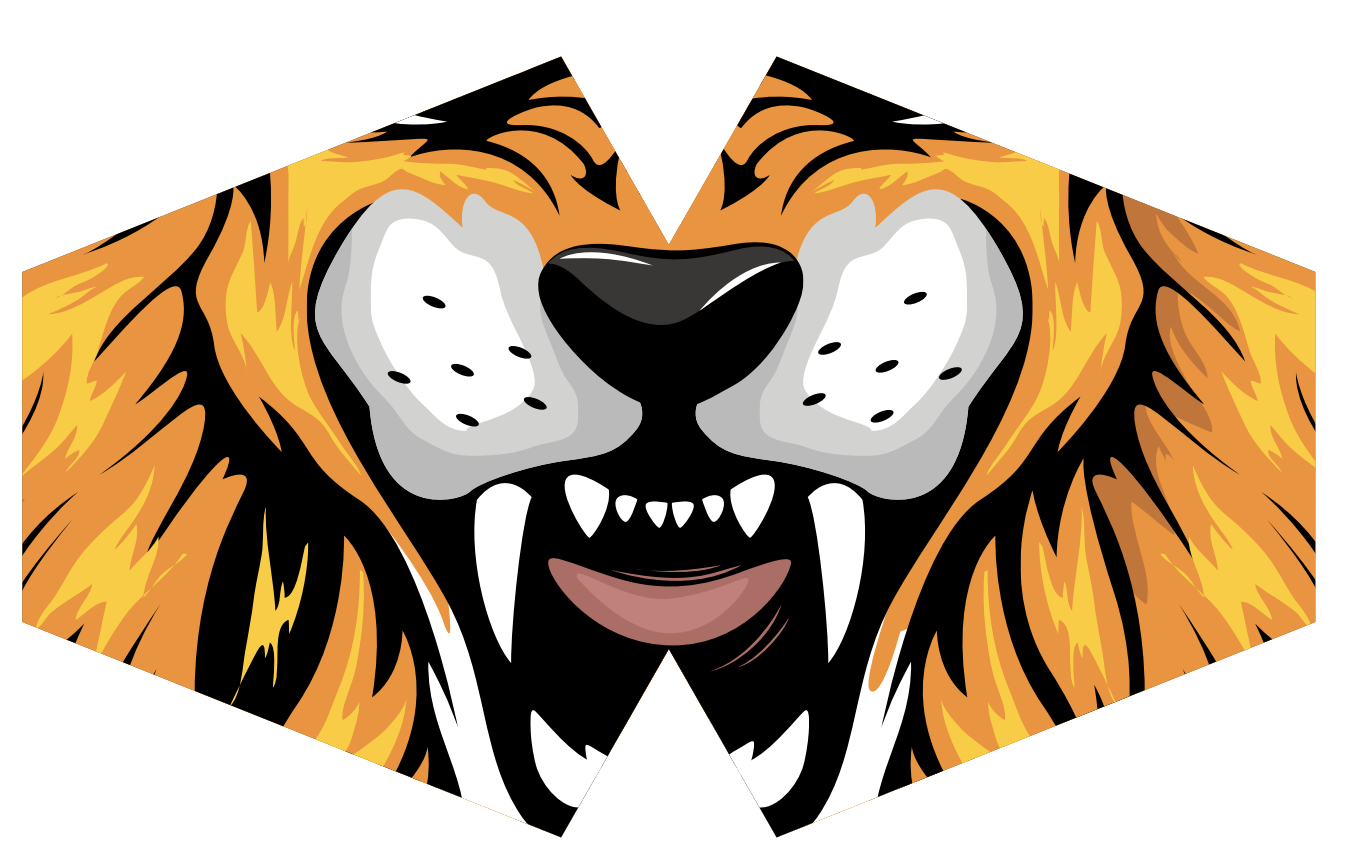 Reusable Fashion Face Mask Tiger Children