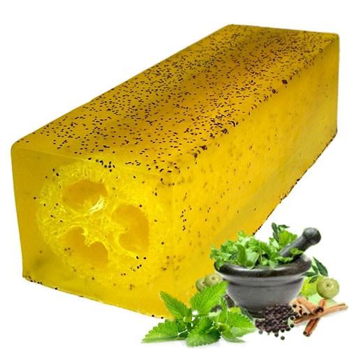 Loofah Soap Loaf Peppermint   Herb Scrub