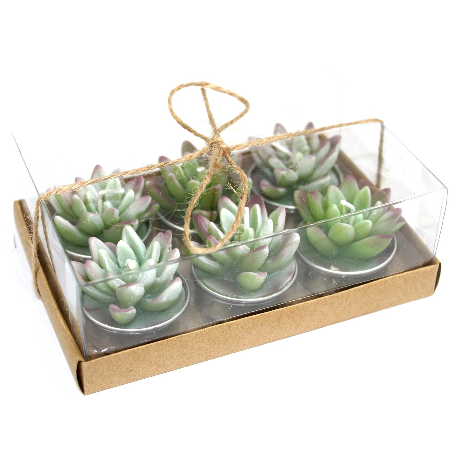 Set of 6 Agave Cactus Tealights in Gift Box