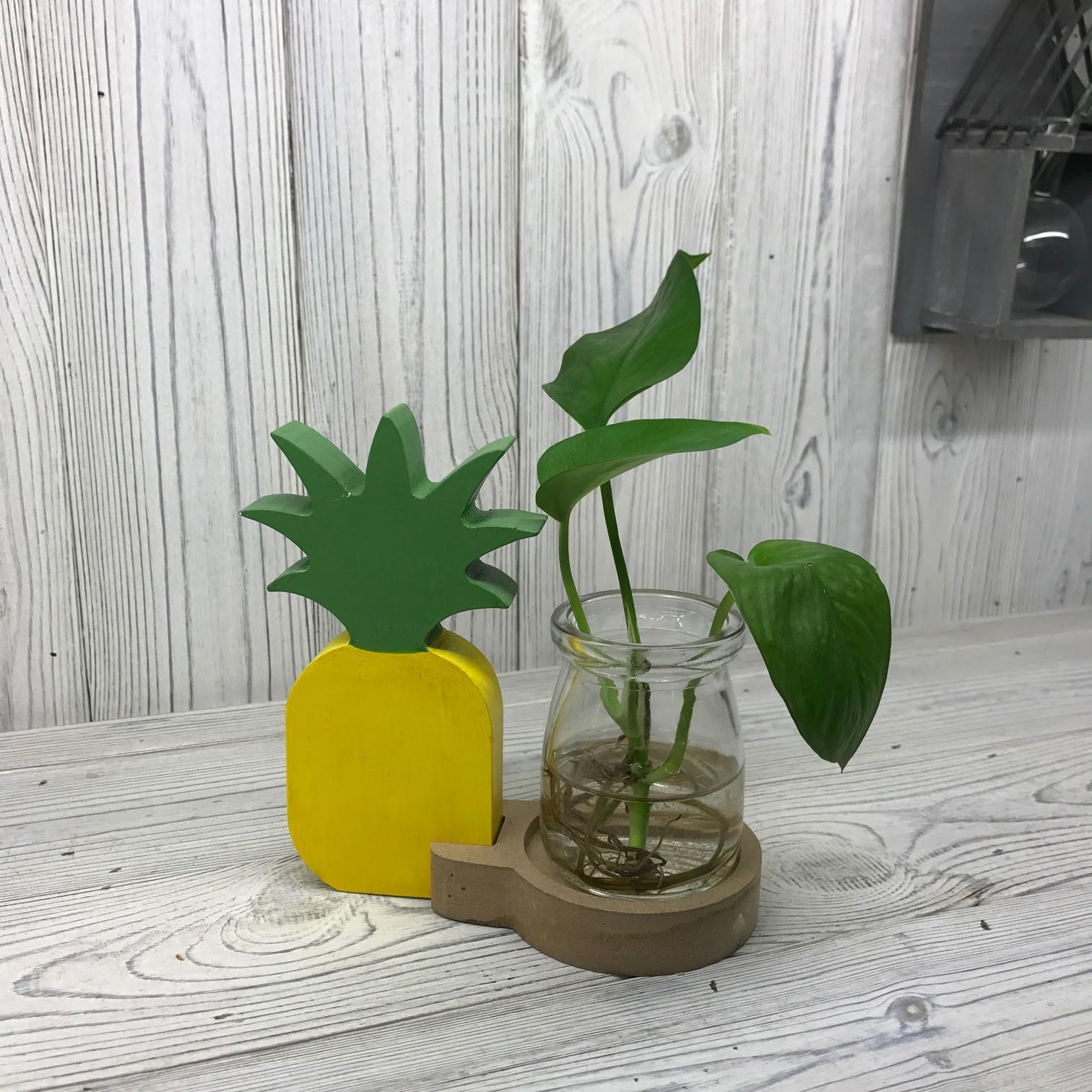 Hydroponic Home Decor Pineapple Pot
