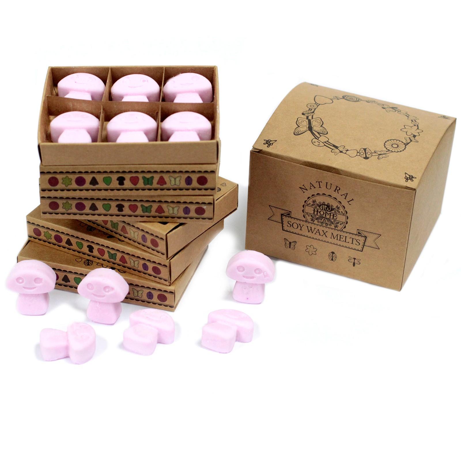 Box of 6 Wax Melts Ylang Ylang