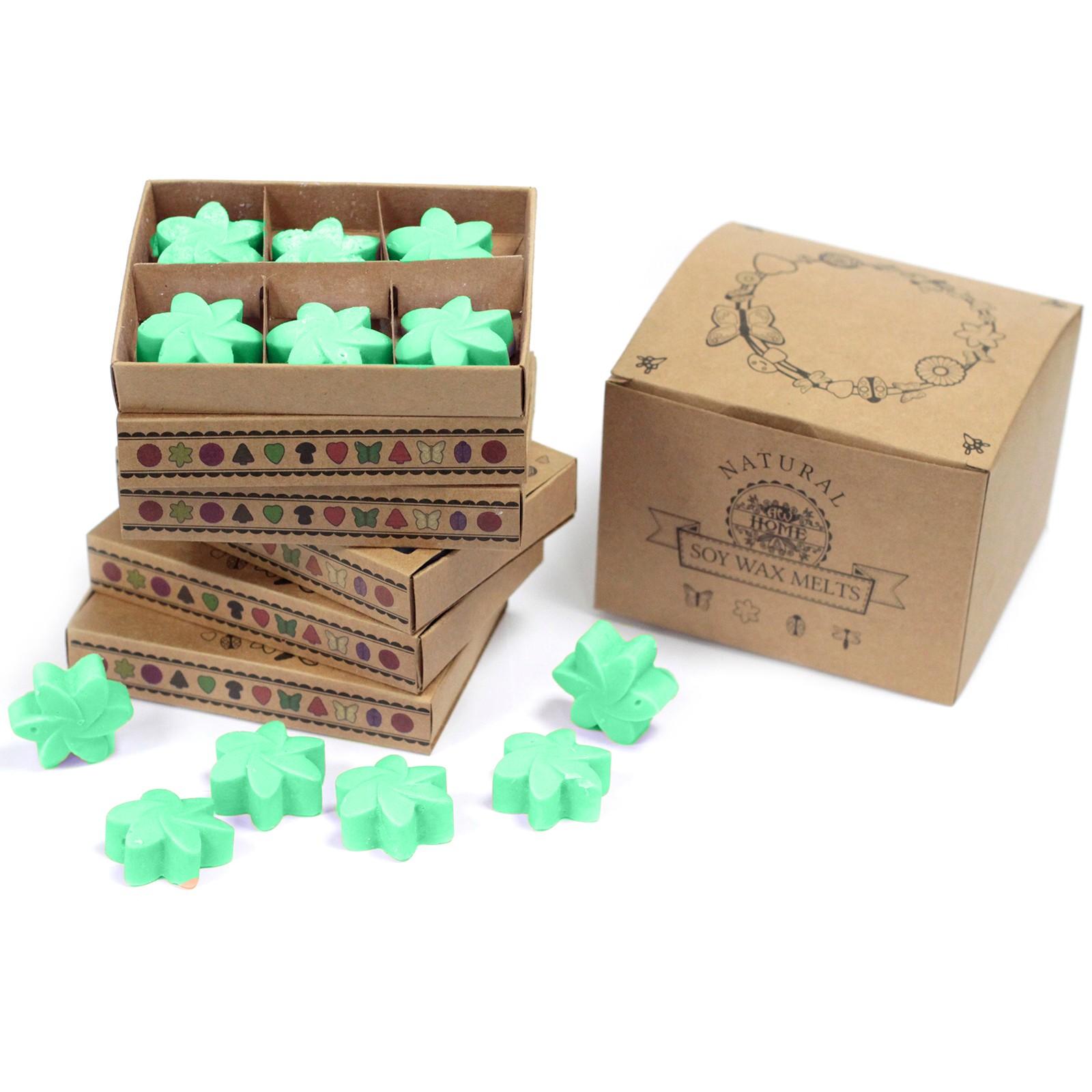 Box of 6 Wax Melts Hidden Garden