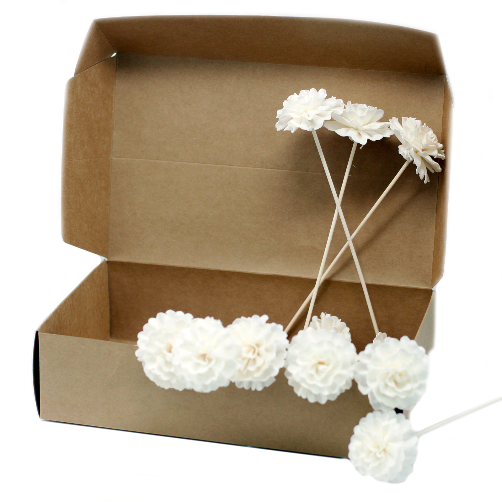 Natural Diffuser Flowers Carnation on Reed