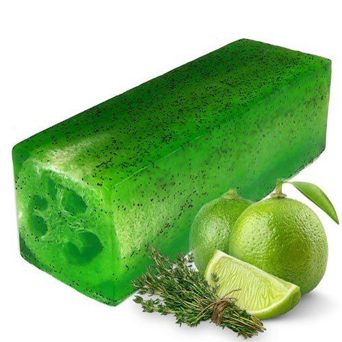 Loofah Soap Loaf Lime and Thyme Toughy